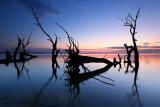 Lake Bonney Sunrise