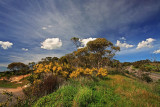 Willunga Hill Lookout