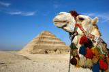The complimentory couple (Sakara Pyramid)