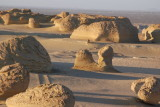 The Whales Valley in Fayoum desert