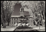 The Infrared Campus