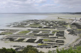 Cancale-Oysters 02.JPG