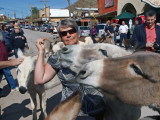 Jeannine feeding the burro's