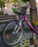 Spring bicycle...