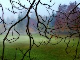 The lazy fog slept on the lawn down there...