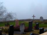 A misty place to sleep peacefully...