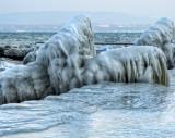 A herd of big prehistoric animals of ice….