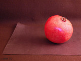 Pomegranate on Paper