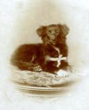 Nana's Jessie c. 1890