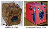 Goldy-and-Bumble-Bee-Box-Cameras.jpg