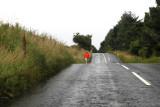 Road_Dan_Petre_2.JPG