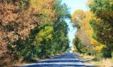 2011-10-03_007.jpg