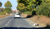 2011-10-03_010.jpg