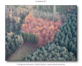 2011-11-12_105.jpg