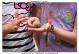 KWT_2012-07-03_140.jpg