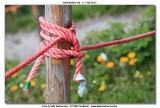 KWT_2012-07-04_279.jpg
