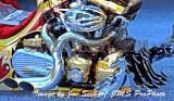 FOS-JS-0039-04-03-11.jpg