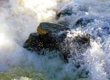 écume de rivière
