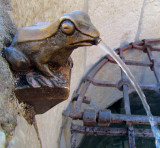 fontaine grenouille,  Annecy
