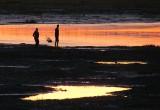 Promenade à marée basse au coucher du soleil
