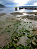 les pierres vertes du bord et la baie des Ha-Ha