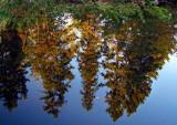 L'eau du Saguenay comme un miroir