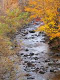 rivière du petit moulin, Chaudière Appalaches