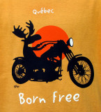 Québec , Born free