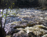 L'eau bouilllonante
