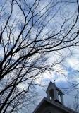 le clocher dans les arbres