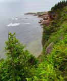 côte sud de l'ile Bonaventure