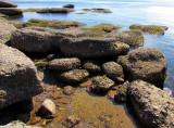 dans les rochers de la grève