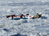 combat sur glace