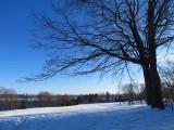 Coulonge en hiver