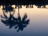 reflet matinal sur la piscine