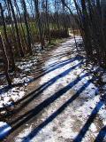 le sentier du parc