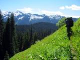 Meadows, flowers, snow and peaks