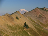 Mount Rainier peaks over Hogback ridge