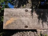 Cispus Pass trail sign 2006