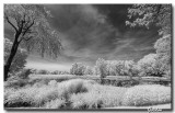 Photographie infrarouge / Infrared Photography