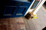 16th April 2011  spring through the door