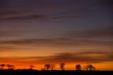 7th November 2011  red sky
