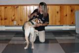 Dog Guides Canada Presentation 5