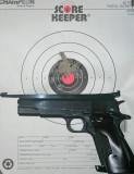 Bullseye Gun Target