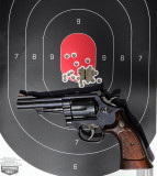 Model-19 Target