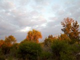0022011-05-16_06-43-14_373.jpg