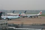 8794 Heathrow T3 planes.jpg