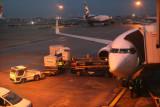 8800 Egypt Air 737 Heathrow.jpg