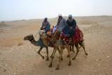 8927 Camels Giza Plateau.jpg