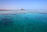 9331 Gordon Reef Red Sea.jpg